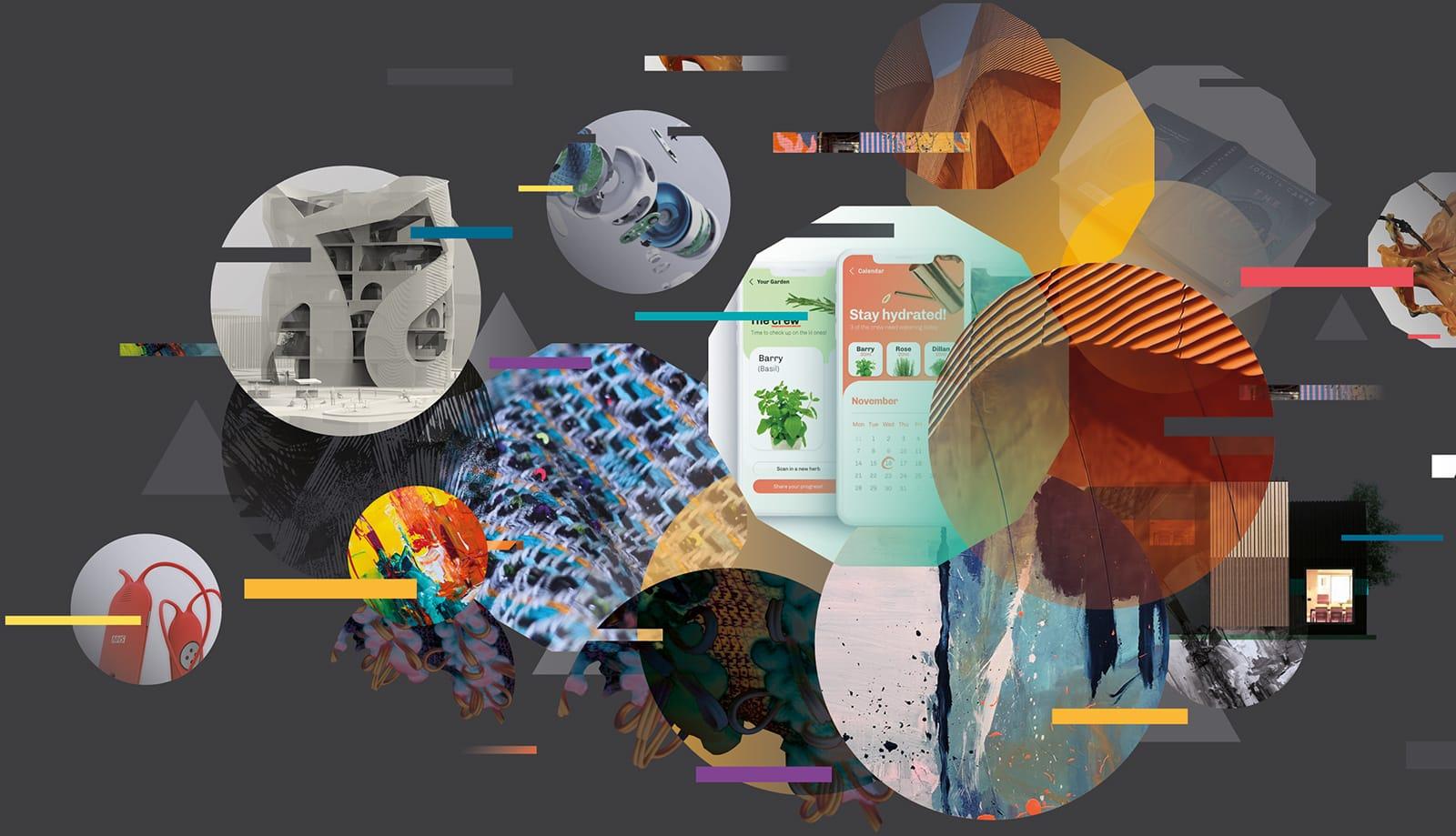 SDCA graphic