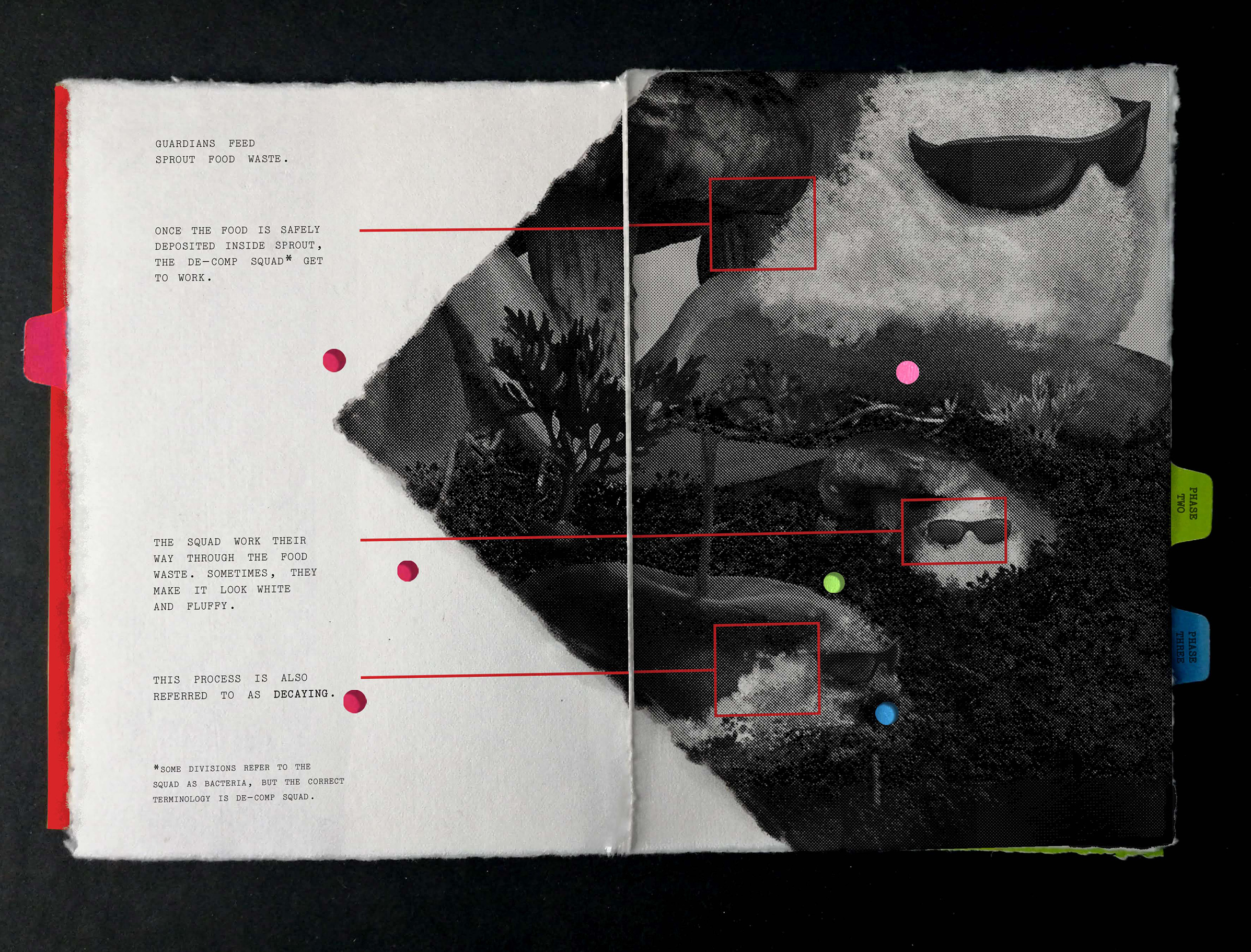 Anatomy of a Compost Heap inside page